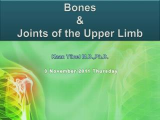 Bones    Joints of the Upper Limb