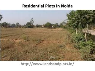 Residential Plots In Noida