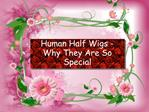 Human Half Wigs - Why They Are So Special