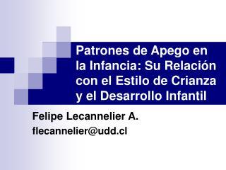Felipe Lecannelier A.flecannelier@udd.cl