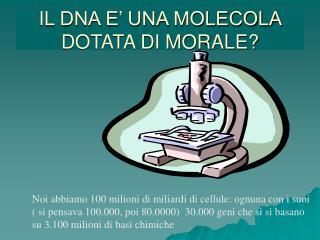 IL DNA E' UNA MOLECOLA DOTATA DI MORALE?