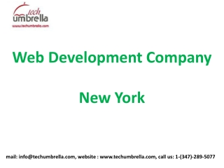 Affordable website design ecommerce solutions in New York