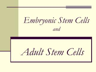 Embryonic Stem Cells and