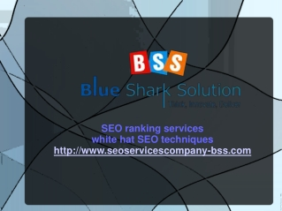 Improve your company website with best SEO solutions