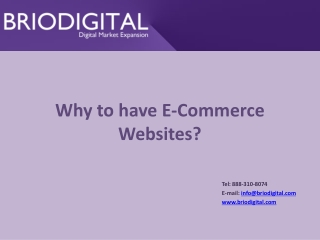Why to have E-Commerce Websites?