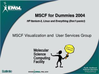 MSCF Visualization and  User Services Group