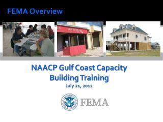 FEMA Overview