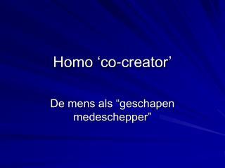 Homo 'co-creator'