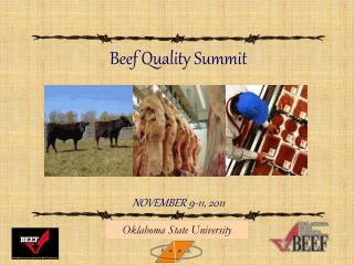 Beef Quality Summit