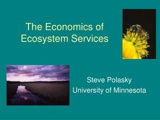 The Economics of Ecosystem Services