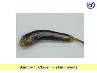Sample 1: Class II – skin defects