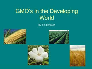 GMO's in the Developing World
