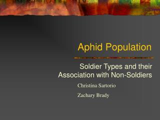 Aphid Population