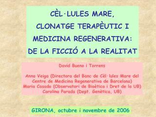 GIRONA, octubre i novembre de 2006