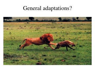 General adaptations?