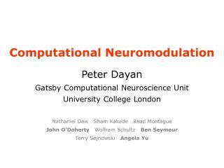 Computational Neuromodulation