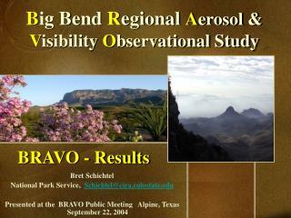 BRAVO - Results
