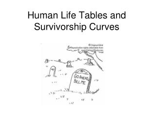 Human Life Tables and Survivorship Curves