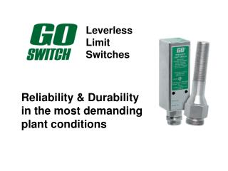 Leverless 