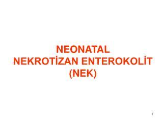 NEONATAL  NEKROTİZAN ENTEROKOLİT (NEK)
