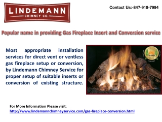 Popular name in providing Gas Fireplace Insert and Conversio