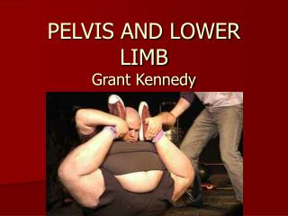 PELVIS AND LOWER LIMB