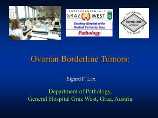 Ovarian Borderline Tumors: