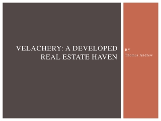 Velachery: A Developed Real Estate Haven