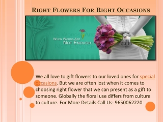 Right Flowers For Right Occasions With FlowerAura