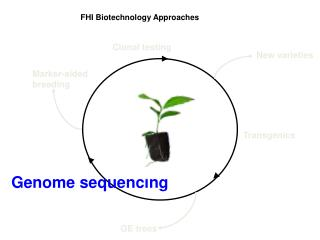 FHI Biotechnology Approaches