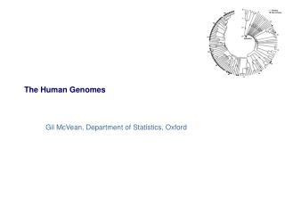 The Human Genomes