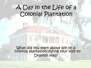 A Day in the Life of a Colonial Plantation