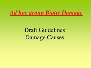 Ad hoc group Biotic Damage