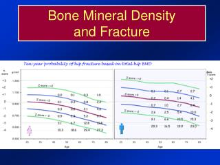 Bone Mineral Density 