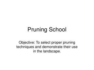 Pruning School