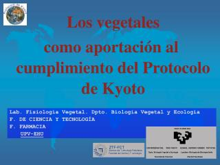 Los vegetales  como aportaci n al cumplimiento del Protocolo de Kyoto