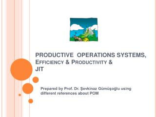 EXAMPLES OF PRODUCTIVE SYSTEMS