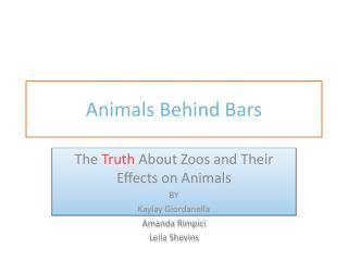 Animals Behind Bars