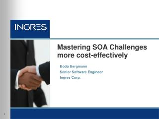 Mastering SOA Challenges more cost-effectively
