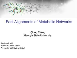 Fast Alignments of Metabolic Networks
