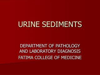URINE SEDIMENTS