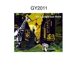 GY2011