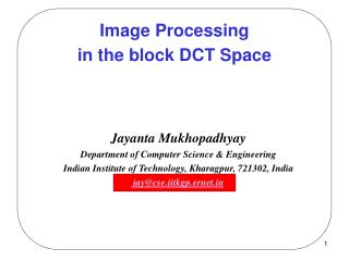 Image Processing  in the block DCT Space