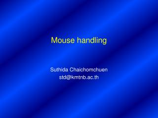 Mouse handling