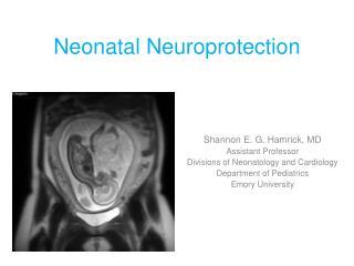 Neonatal Neuroprotection