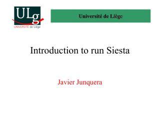 Introduction to run Siesta