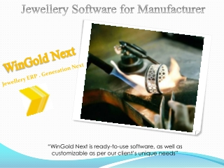 Jewellery Software for Manufacturer