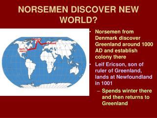 NORSEMEN DISCOVER NEW WORLD?