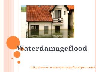 Ceiling Water Damage Repair