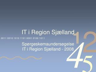 IT i Region Sjælland